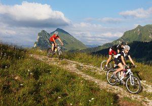 Mountainbike -® Adolf Bereuter_Bregenzerwald Tourismus.2533101.jpg.2976451